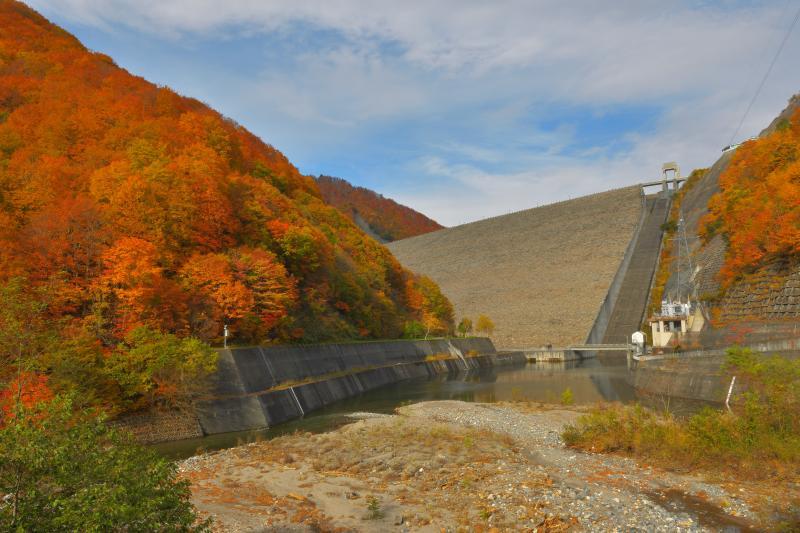 [ 紅葉堤 ]  規模の大きい奈良俣ダムの堤。左右の燃えるような紅葉に包まれています。