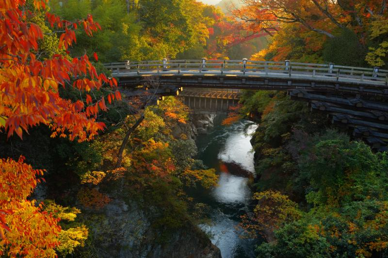 [ 錦秋の猿橋 ]  険しいV字谷を鮮やかに染め上げる紅葉。新旧幾つもの橋が重なって見える場所です。
