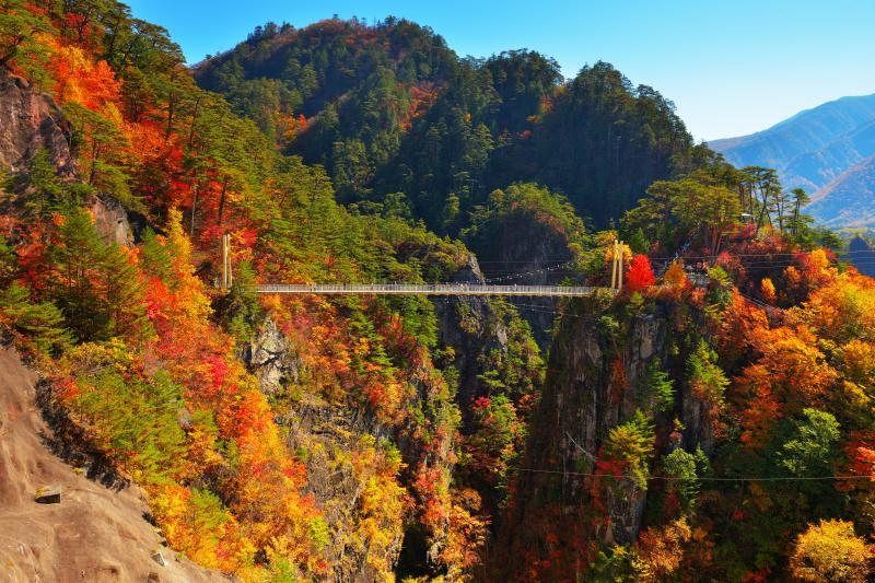 [ 瀬戸合峡全景 ]  奥日光のさらに北側に位置する瀬戸合峡はとても険しい峡谷。川俣湖(ダム)と峡谷の美しさを両方味わうことができる紅葉の名所。