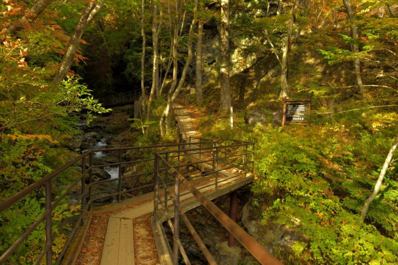[ 竜化の滝・遊歩道(木道) ]  遊歩道は橋・木道などが整備されていて歩きやすくなっています。