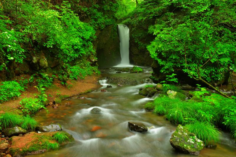 [ 滝と渓流 ]  滝の下はなだらかな渓流になっており、岩にぶつかる水が美しい。