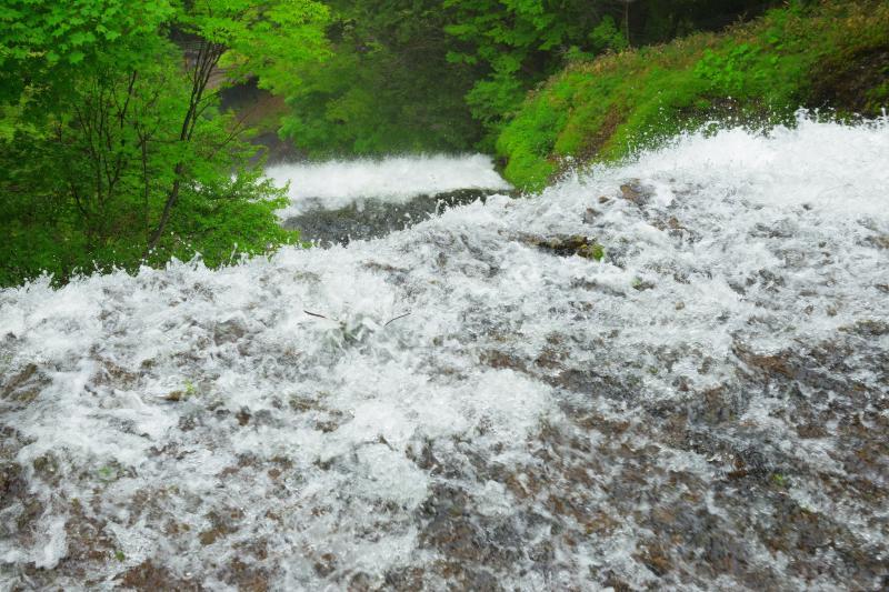 [ 落下 ]  湯滝の上からは滝壺の観瀑台を眺めることができます。上から見ると2段の滝のようになっています。