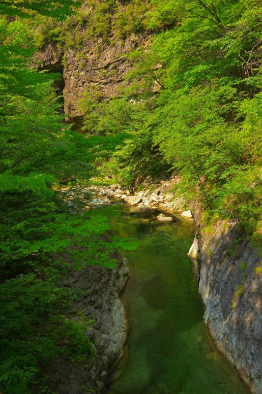 [ 庚申川と絶壁 ]  この辺りは深い谷になっており、山岳橋からは谷と絶壁の峡谷風景を味わうことができます。