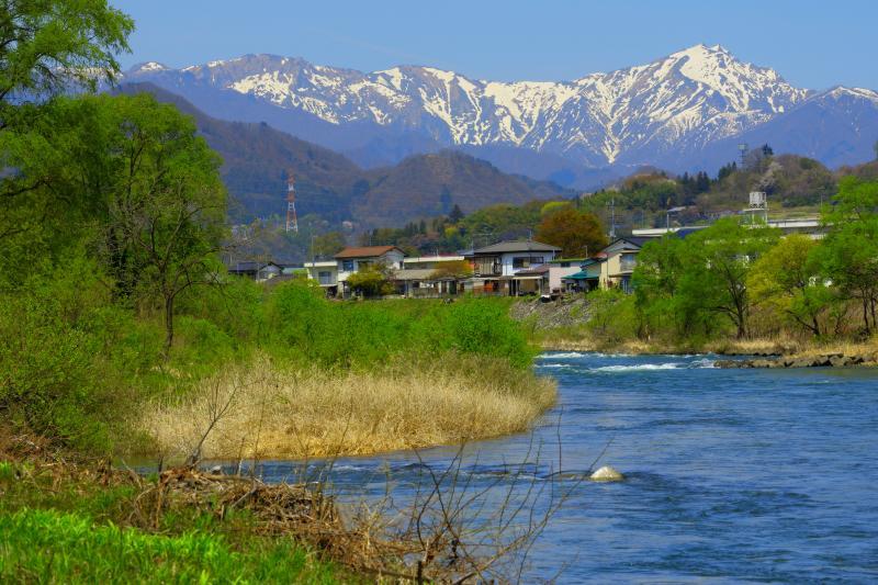 [ 谷川岳新緑 ]  残雪の谷川岳とブルーに澄んだ利根川の流れ。桜の季節が終わる頃、眩しいばかりの新緑が広がっていました。