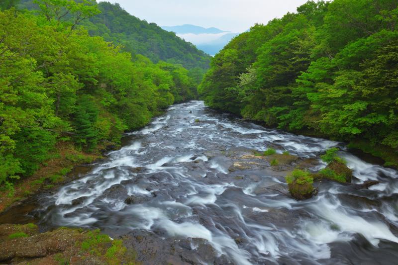[ 大渓流 ]  大きな岩盤の上を中禅寺湖に向かって流れ行く水は滝というより大きな渓流。
