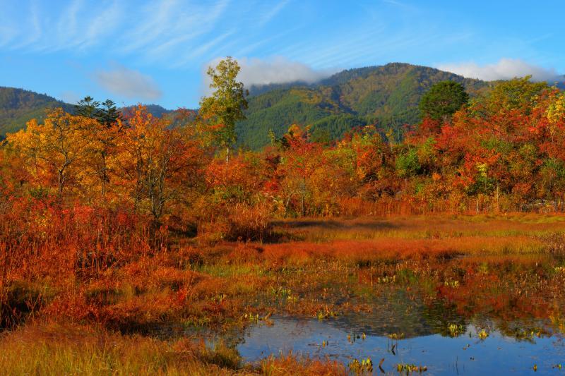 [ 池を囲む紅葉 ]  山々に囲まれた「どじょう池」は守られているような心地よい場所です。周囲の木々は紅葉真っ盛りでした。