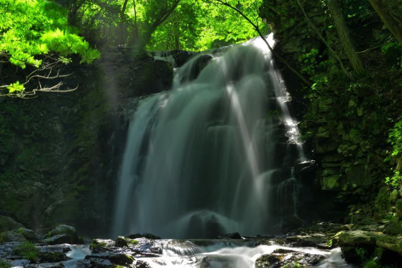 [ 浅間大滝 光芒 ]  水量豊富な滝で、木漏れ日が差し込むと美しい光芒が現れます。