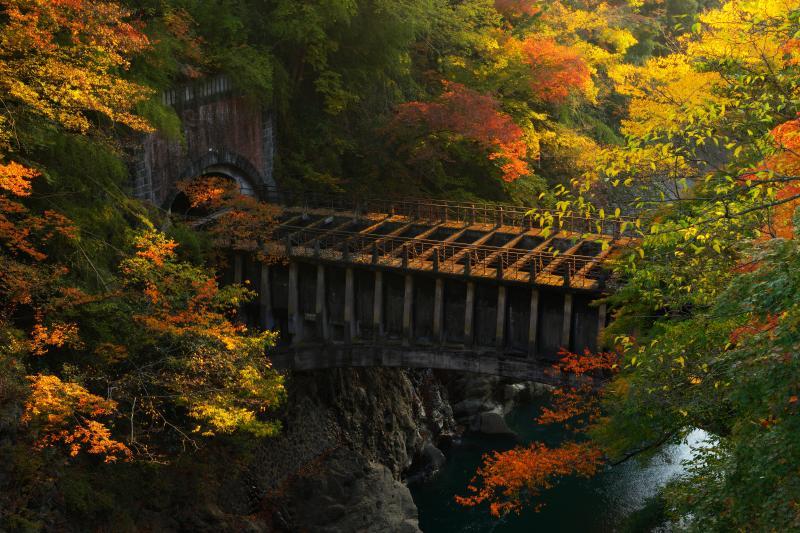 [ 古びた水道橋 ]  猿橋の奥に見えるレンガ造りのトンネルと水道橋。廃墟感漂う写真に。