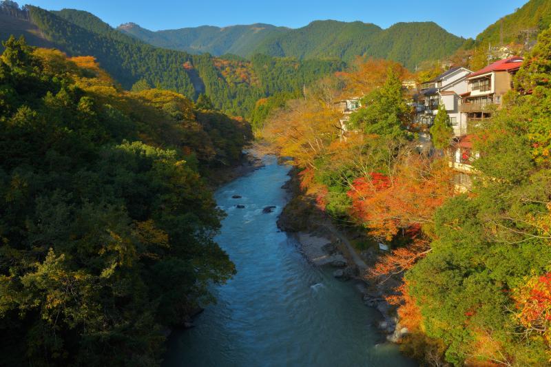 [ 御岳渓谷の秋 ]  川の両岸は色とりどりの紅葉で賑やかに。深い渓谷は昼前後の数時間しか全体に陽が当たりません。