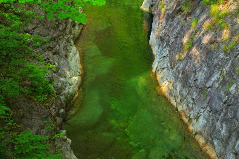 [ 緑美しき淵 ]  山岳橋から下流側は断崖になっており、庚申川の深い緑がとても綺麗でした。