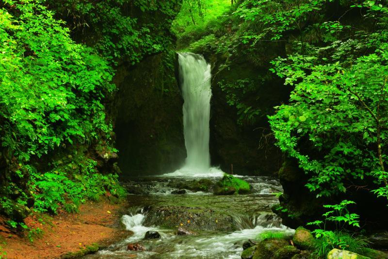 岩盤を登る竜   渓流の奥には大きな岩盤が立ちはだかり、そこを登る竜のような流れが美しい。