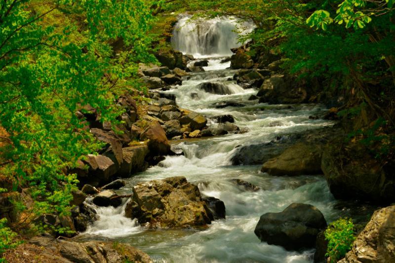 [ 軽快な流れ ]  滝から左右に揺られるような美しい流れが続いていました。