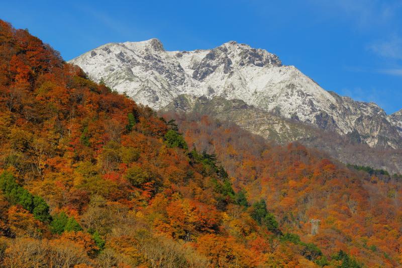 [ 谷川岳冠雪 ]  前日の冷え込みにより雪化粧した谷川岳。青空と雪のコントラストが美しい。