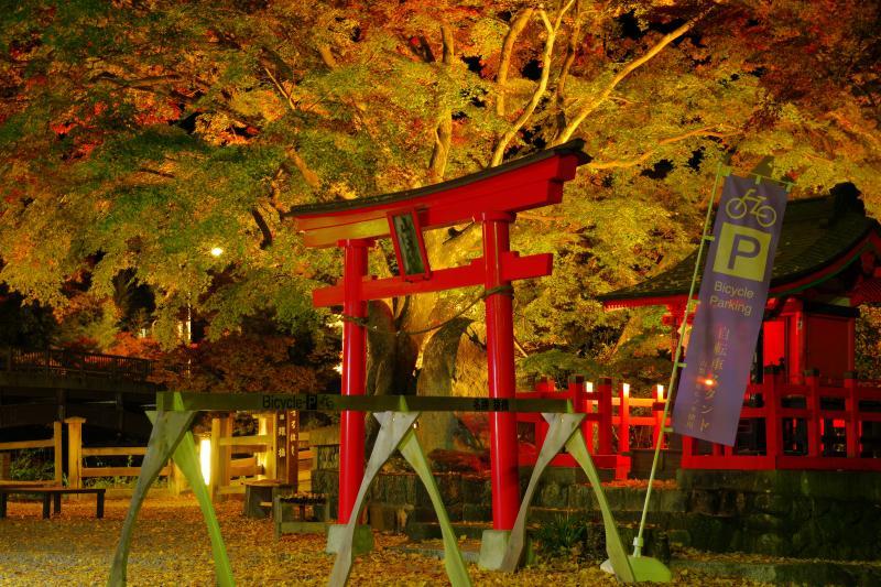 [ 鳥居と紅葉 ]  夜にはライトアップが行われ、橋周辺は妖艶な空間に。