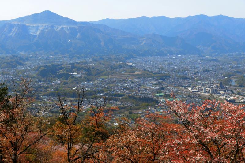 [ 秩父の街並みと武甲山 ]  ヤマザクラの奥に秩父の街並みと秩父のシンボル「武甲山」が見えます。