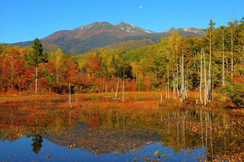 [ 乗鞍岳シンメトリー ]  一の瀬園地にあるどじょう池は乗鞍岳の映り込みと立ち枯れが美しい。乗鞍岳と紅葉が池に綺麗に映り込んでいました。
