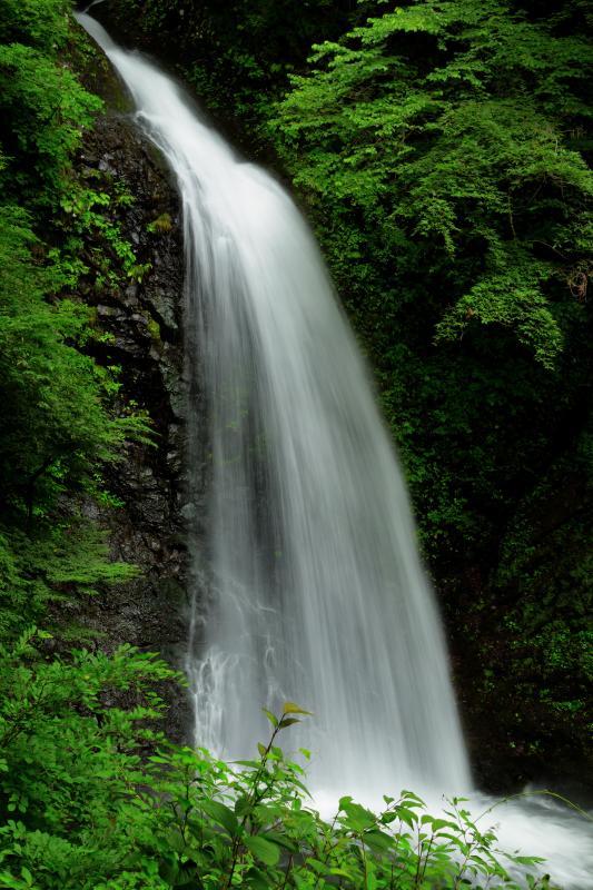 [ 大仙の滝 ]  遊歩道を2分ほど歩いた観瀑台から撮影。とても形の美しい滝です。