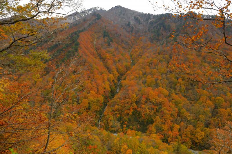 [ 紅葉滝 ]  一ノ倉沢へ向かう遊歩道の途中、錦秋の山に美しい一筋の流れが。通る人は皆立ち止まり、カメラを向けていました。