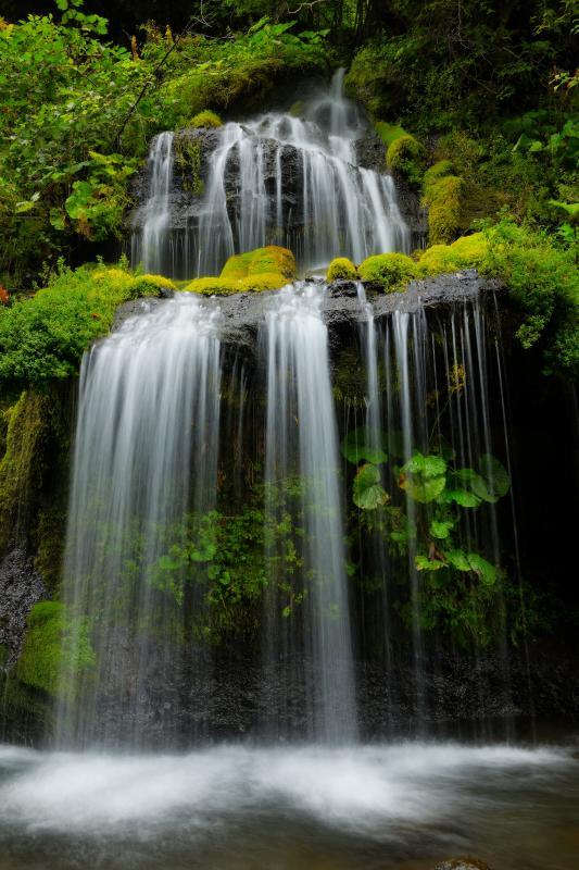 [ 日本庭園 ]  美しくデザインされたような滝の流れ。スローシャッターがとても似合う絹糸の流れ。