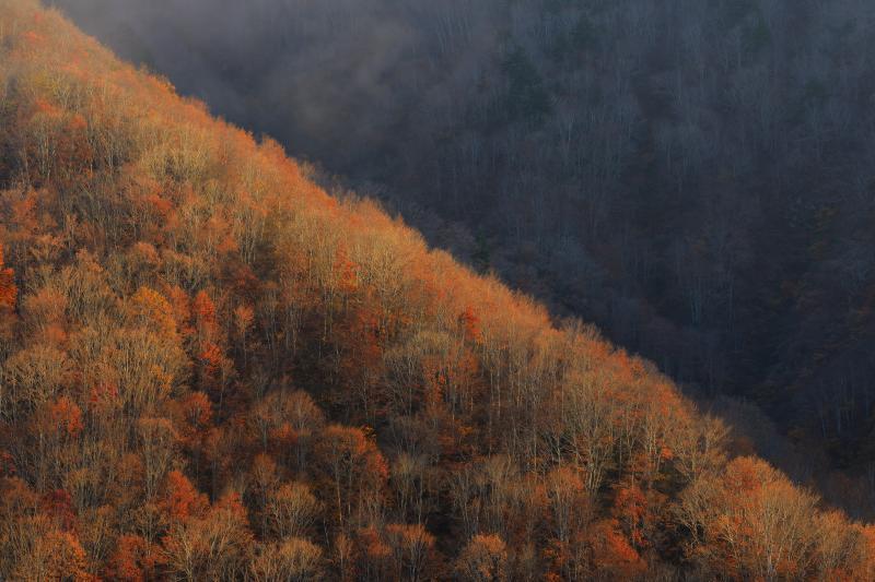 [ 対角線 ]  山の斜面に光があたり、対角線状に輝いていました。