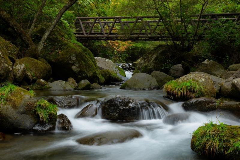 [ 渓流風景 ]  遊歩道の橋付近は瀬になっており、渓流風景を楽しむことができます。