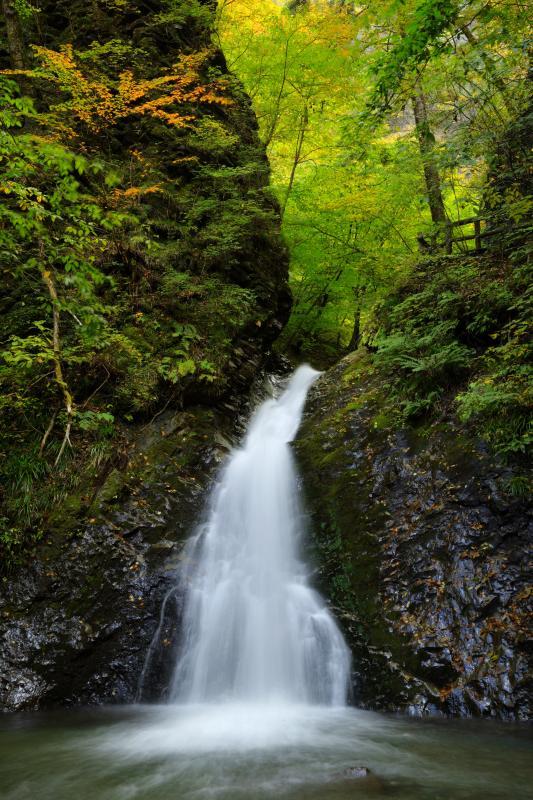 [ 秋の風挙の滝 ]  遊歩道途中にある滝が美しい姿を見せてくれます。岩と左側の木々が印象的です。