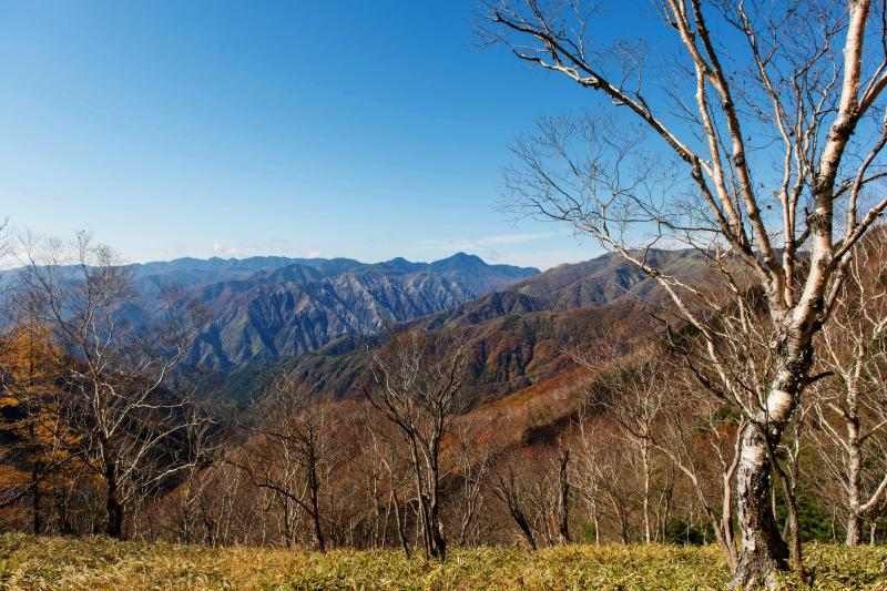 [ 青空と足尾の山々 ]  駐車場から紅葉と山のパノラマが広がっています。