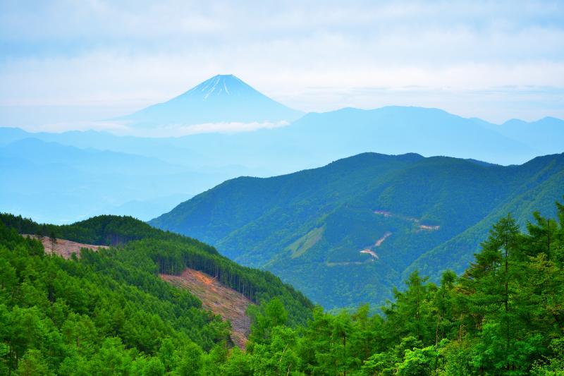 櫛形山からの富士山 |