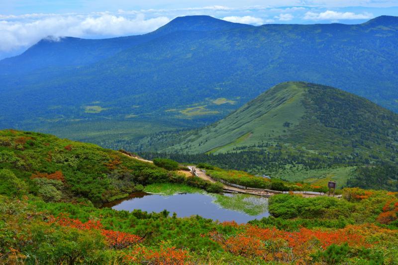 八甲田大岳からの眺望 | 夏の終わり、少しずつ赤くなる木々の葉と緑のコントラストが美しい。