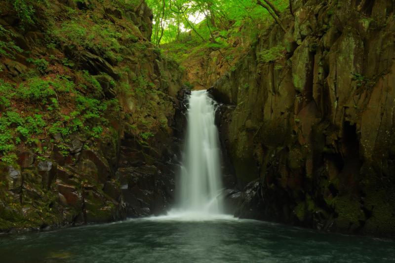 [ 清里 大滝 ]  大門川にある「大門川三滝」のひとつ。谷の中にあり水量豊富な滝です。