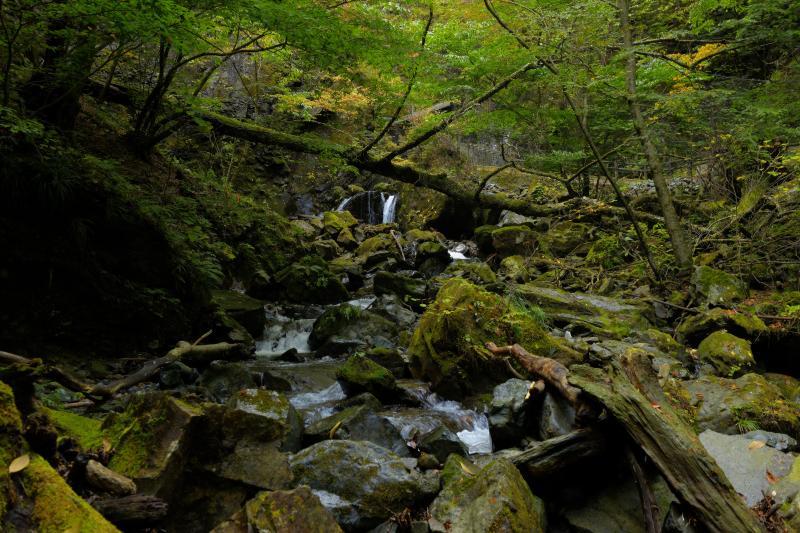 [ 大き岩がゴロゴロ ]  遊歩道の上部は荒々しい谷になっていました。