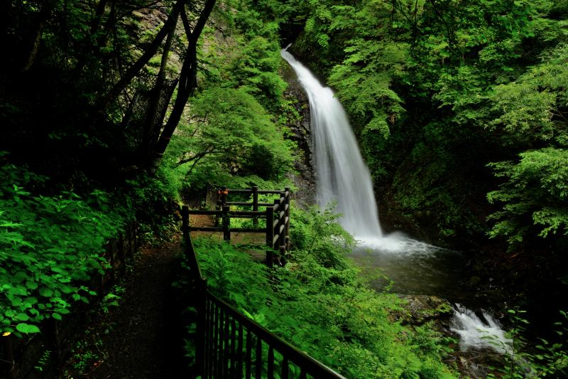 [ 大仙の滝 観瀑台 ]  遊歩道の途中に観瀑台があります。写真の展望スペースからさらに奥にも行くことができます。