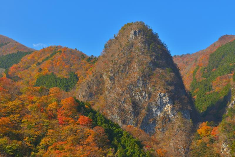 [ 錦秋の稲村岩 ]  日原の集落を通るとひときわ目を引くのが稲村岩。巨大な石灰岩の塊です。