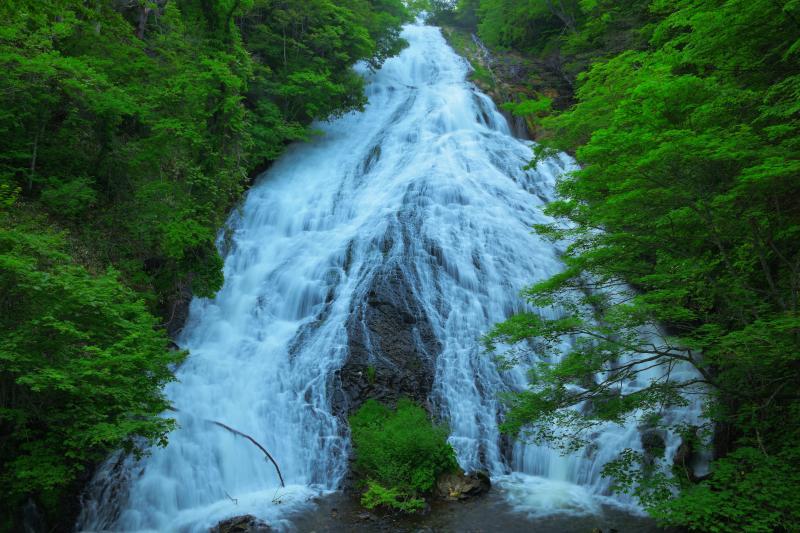 [ 夏滝 ]  湯ノ湖のすぐ下にある湯滝は迫力と優雅さの両方を持ち合わせています。