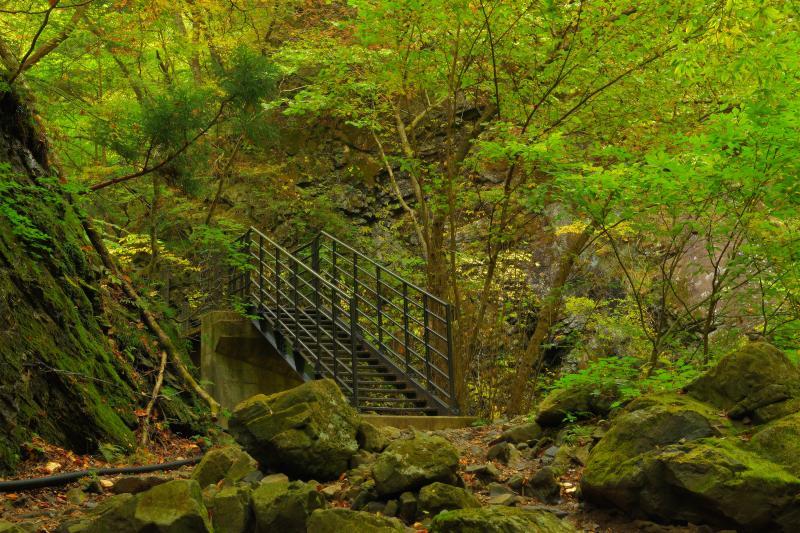 [ 竜化の滝・遊歩道にある階段 ]