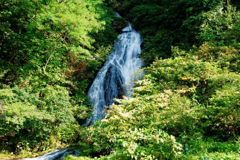 [ 美しき七滝 ]  七段ある滝の最下段です。