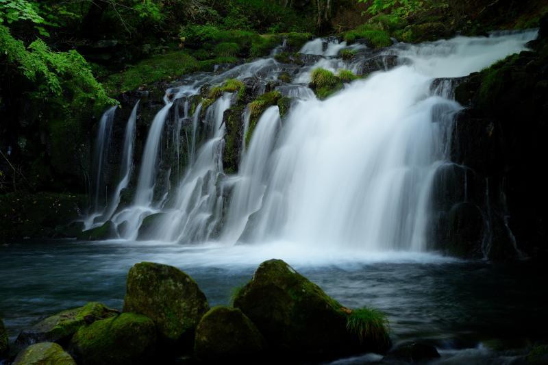 [ 美滝 ]  苔むした空間の奥にある存在感のある滝。形が整っており、うっとりとするような美しさがあります。