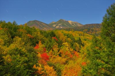星降る紅葉乗鞍岳| 錦秋の乗鞍高原。橋からは月明かりに照らされたしっとりとした紅葉が広がり、空には星が輝いていました。