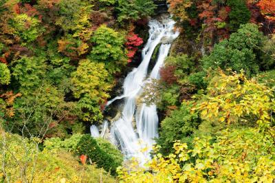 紅葉美滝| 美しい姿に感動の声が上がる。