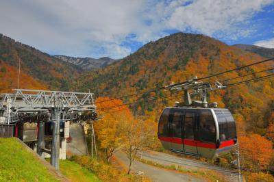 紅葉空中散歩| 紅葉真っ盛りの谷川岳周辺。山麓駅からゴンドラが勢いよく飛び出して行きます。