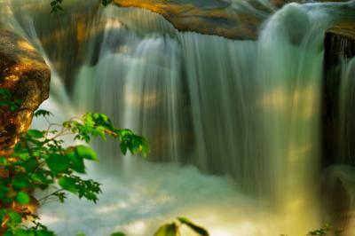 洞元の滝| 奈良俣湖のすぐ下にある滝です。新緑の頃には優しい木漏れ日が滝を照らしていました。