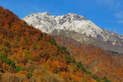 谷川岳冠雪| 前日の冷え込みにより雪化粧した谷川岳。青空と雪のコントラストが美しい。