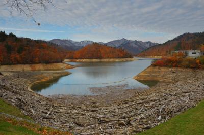 流木と紅葉| ダムの湖畔が流木で埋め尽くされていました。秘境とも呼べる奥利根湖の晩秋。