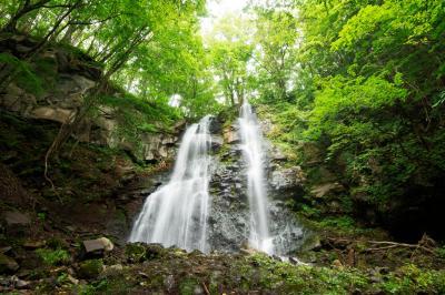 友情の滝| 森の中の岩盤を2本仲良く流れ落ちる