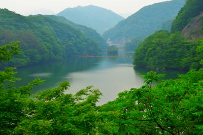 新緑のダム湖| ダム湖としては小さくてコンパクト。奥の山が印象的でした。