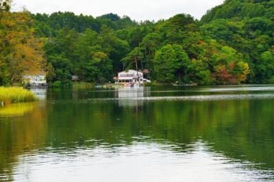 秋の湖畔| 湖畔には駐車場があり、とても静かな雰囲気でした。
