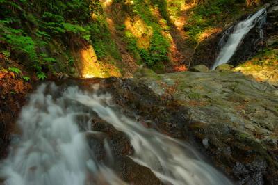二段の流れ  滝尾神社の杉林の中にある静かな滝です。スポットライトのように木漏れ日が差し込んできました。