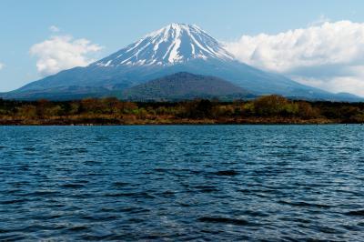 子持ち富士| 精進湖からは子供を抱いているような富士山を見ることができます。