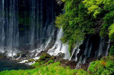 新緑の糸| 新緑の眩しい緑の中に美しい滝の流れがありました。
