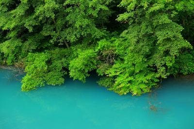 エメラルドグリーンの水面| 強酸性の白砂川にあるこのダムは水の色が神秘的。